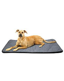 Luxury Reversible Padded Dog Blanket